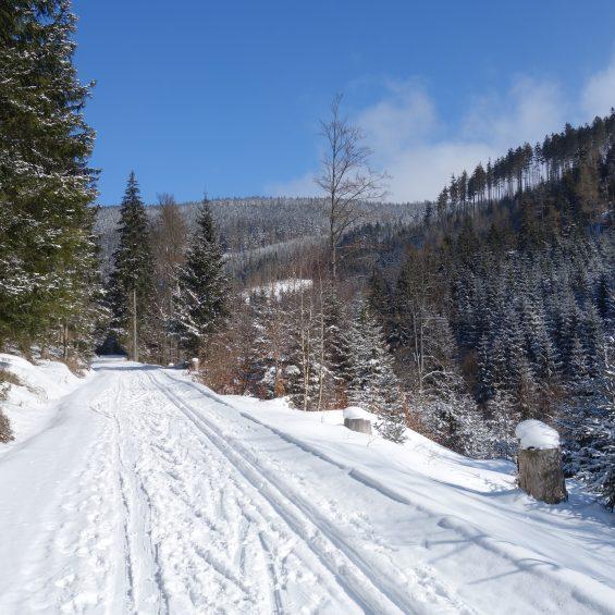 3.biegówki.masyw.śnieżnika