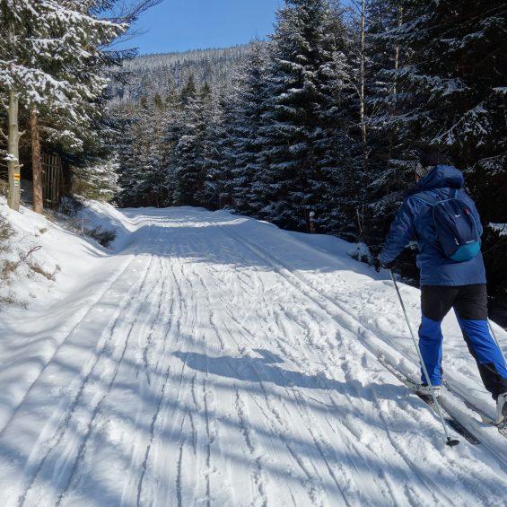 4.biegówki.masyw.śnieżnika