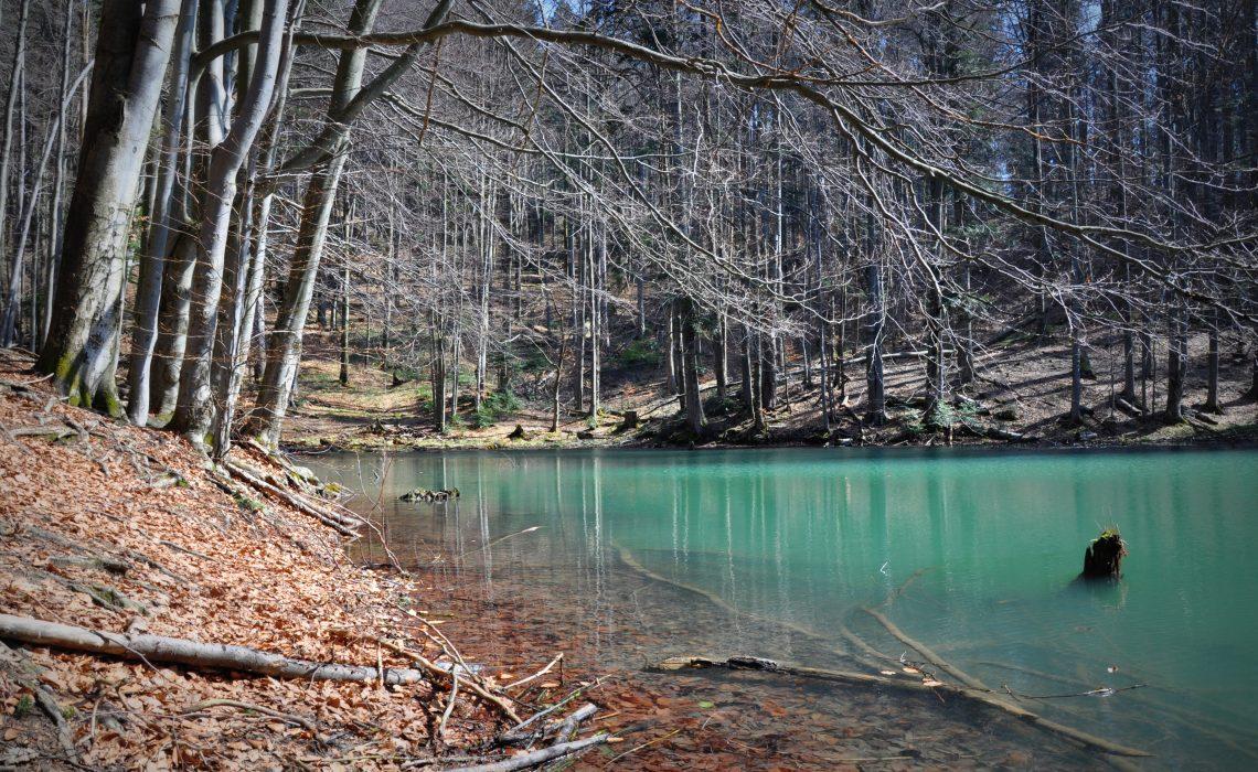 4.jeziorka.duszatyńskie