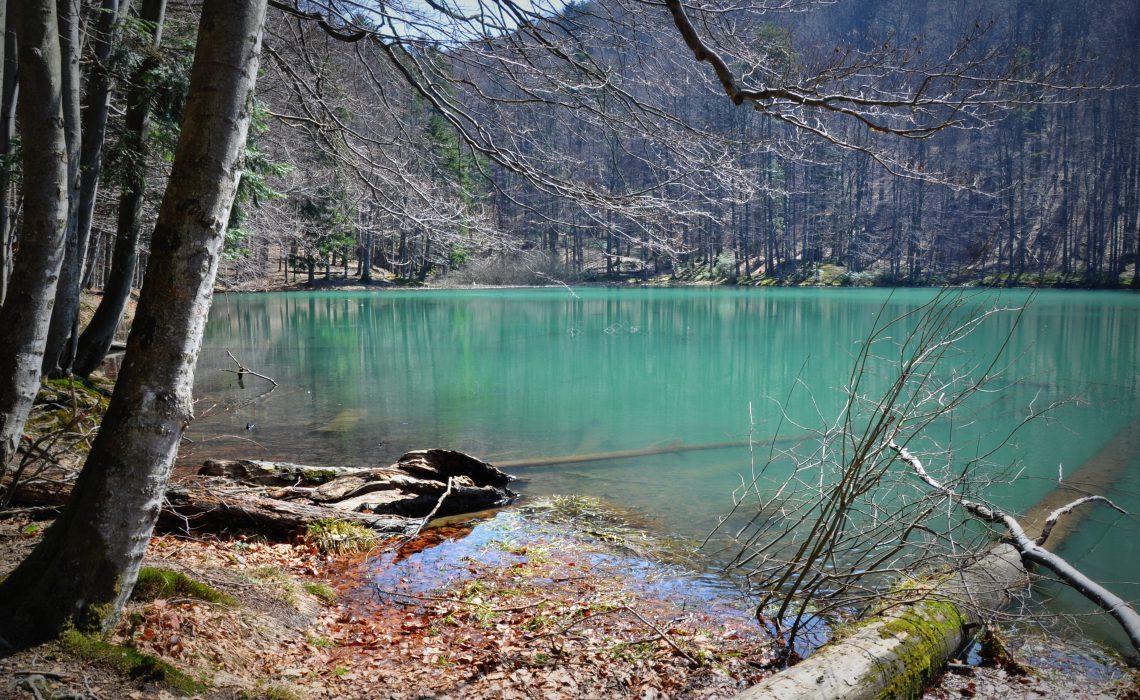 5.jeziorka.duszatyńskie